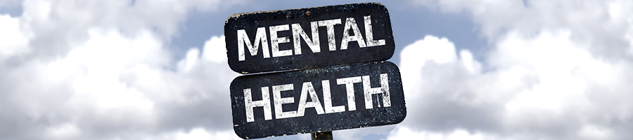 Mental Health and Well being Summit 2016