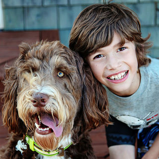 How Strong Is Children's Attachment to Their Pets?