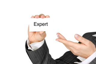 What Kind of Expert Is a Psychotherapist?